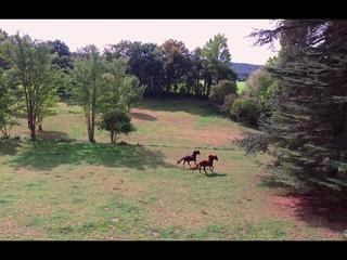 Vidéo Château de Puy Robert Montignac Lascaux Dordogne France